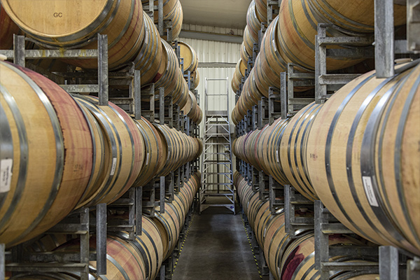 Rows of Barrels at Wooing Tree Wine Facility