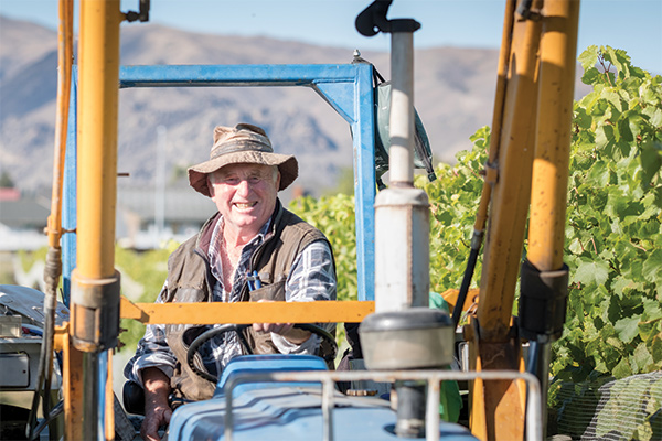 Man on a Tractor at Wooing Tree Vineyard