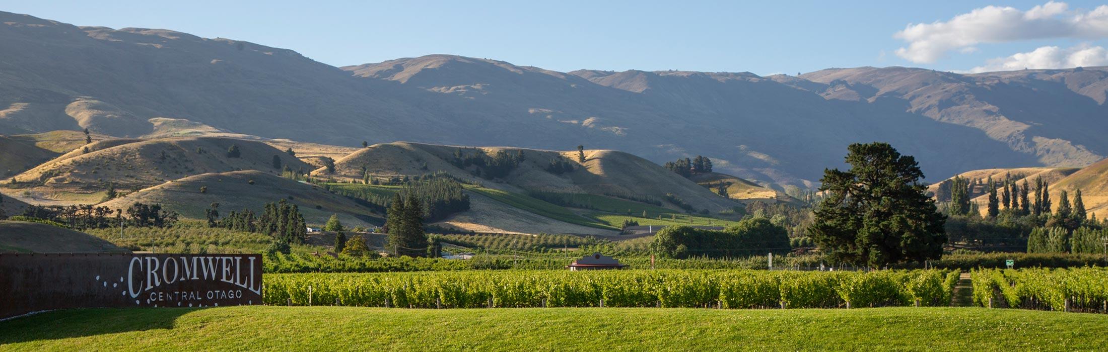 Cromwell Central Otago Landscape