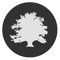 Wooing Tree Icon